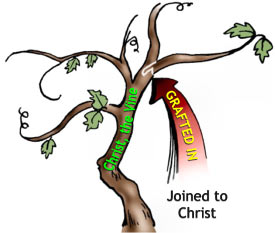 Jesus Is The Vine We Are The Branches Craft